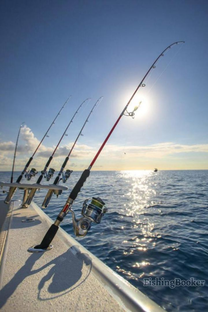 Jacki galveston fishing charter galveston texas for Fishing galveston tx