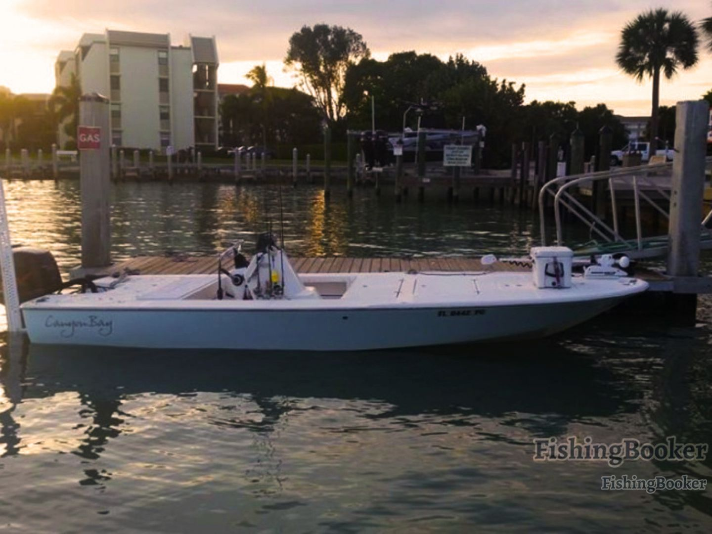 Live action fishing charters marco island florida for Charter fishing marco island
