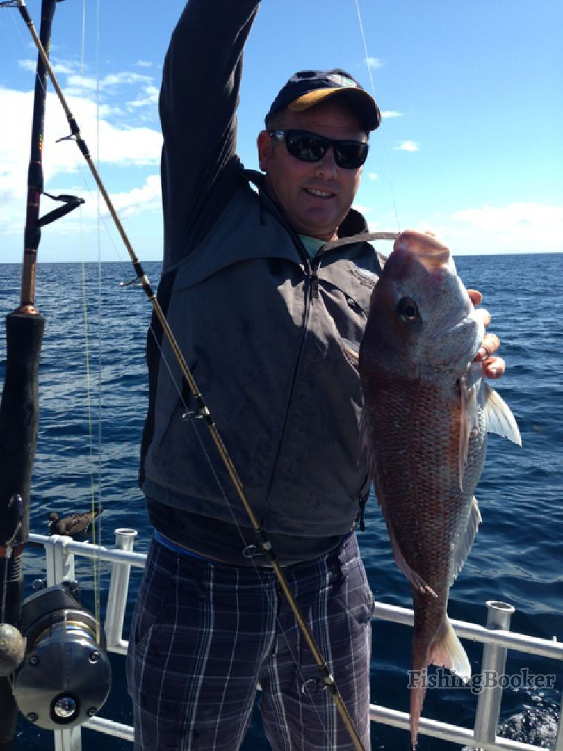 Legasea megabites fishing charter auckland new zealand for Fishing charters auckland