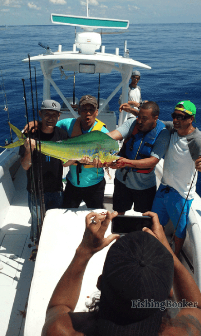 Fishing guide capt tom hinterschied pompano beach for Pompano beach fishing charters