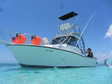 Aquadventures - 29' Why Knot?, Cozumel
