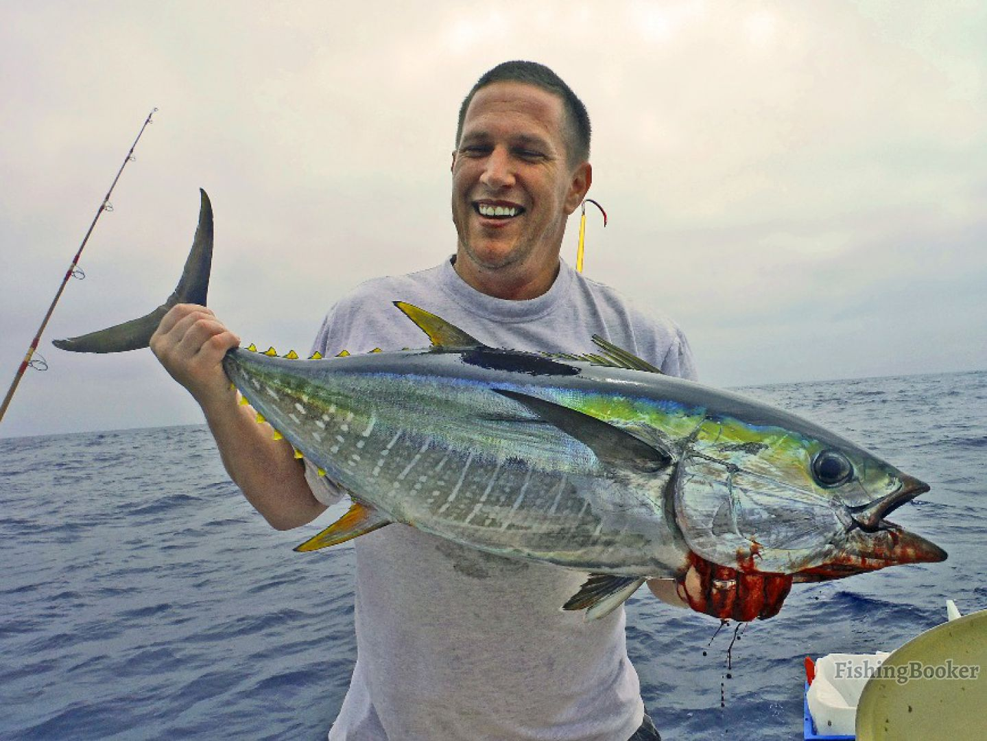 Reel to reef charters heritage dana point california for Dana point fishing