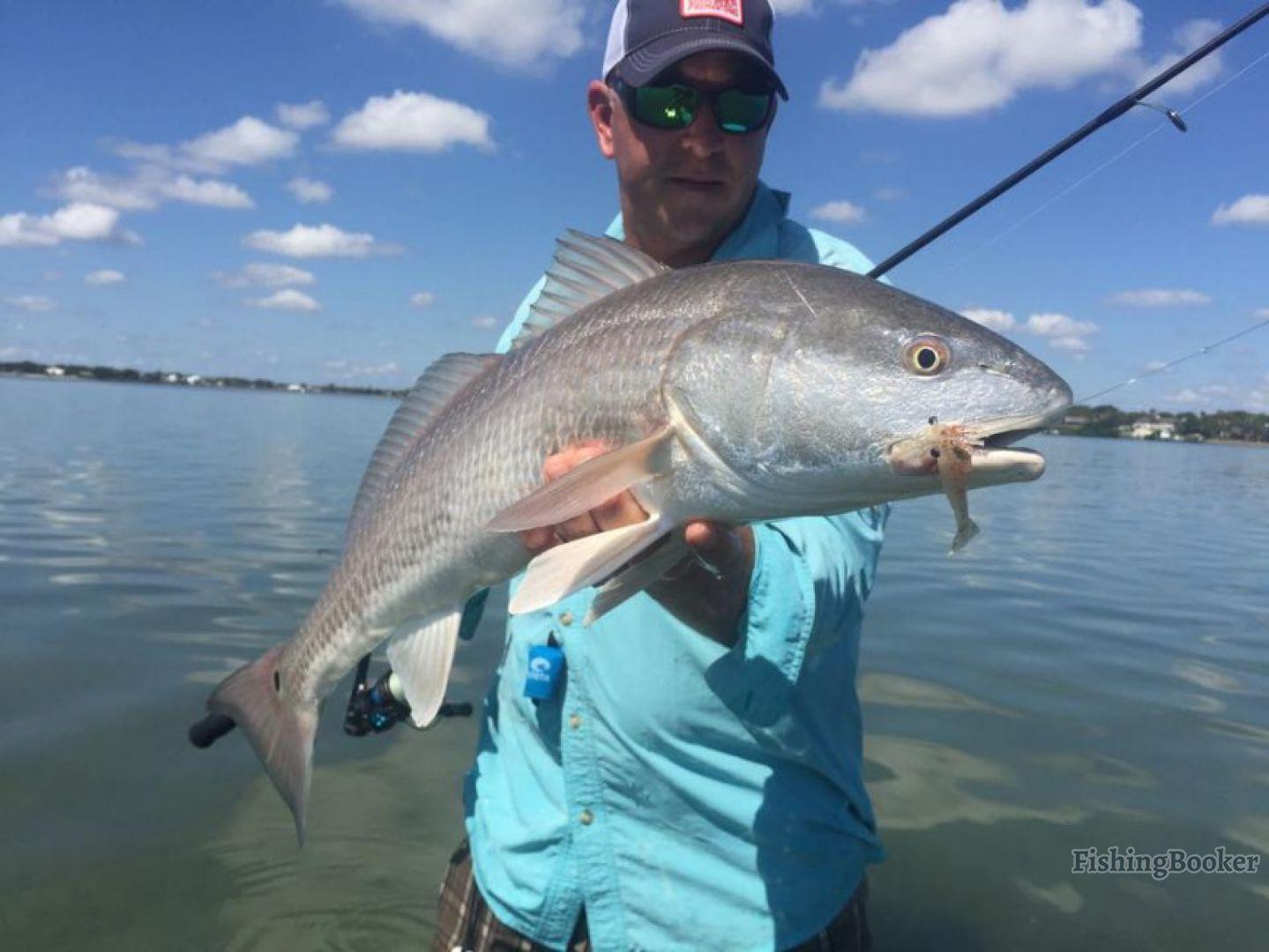 Stuart inshore fishing greg snyder jensen beach florida for Stuart fishing charter