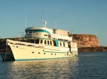 Viv's Barra - TSMY Swordfish , Darwin
