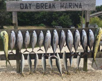 Grouper Trooper Fishing Charters, Pensacola