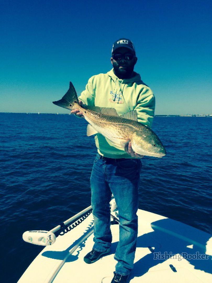 Reel addiction fishing charters gulf breeze florida for Florida gulf coast fishing charters