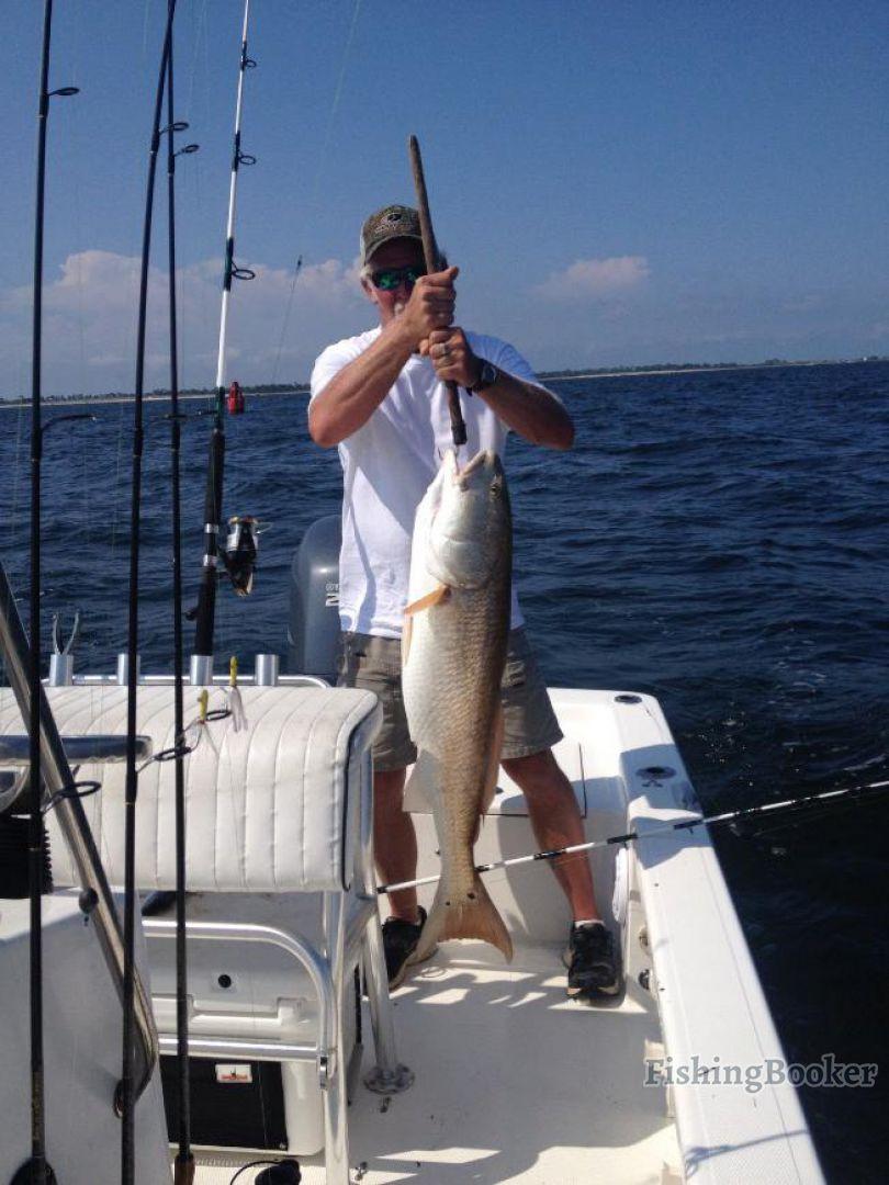Reel addiction fishing charters gulf breeze florida for Gulf angler fishing charters