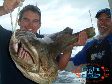 Fish N Crab Deep Sea Charters, Sunshine Coast