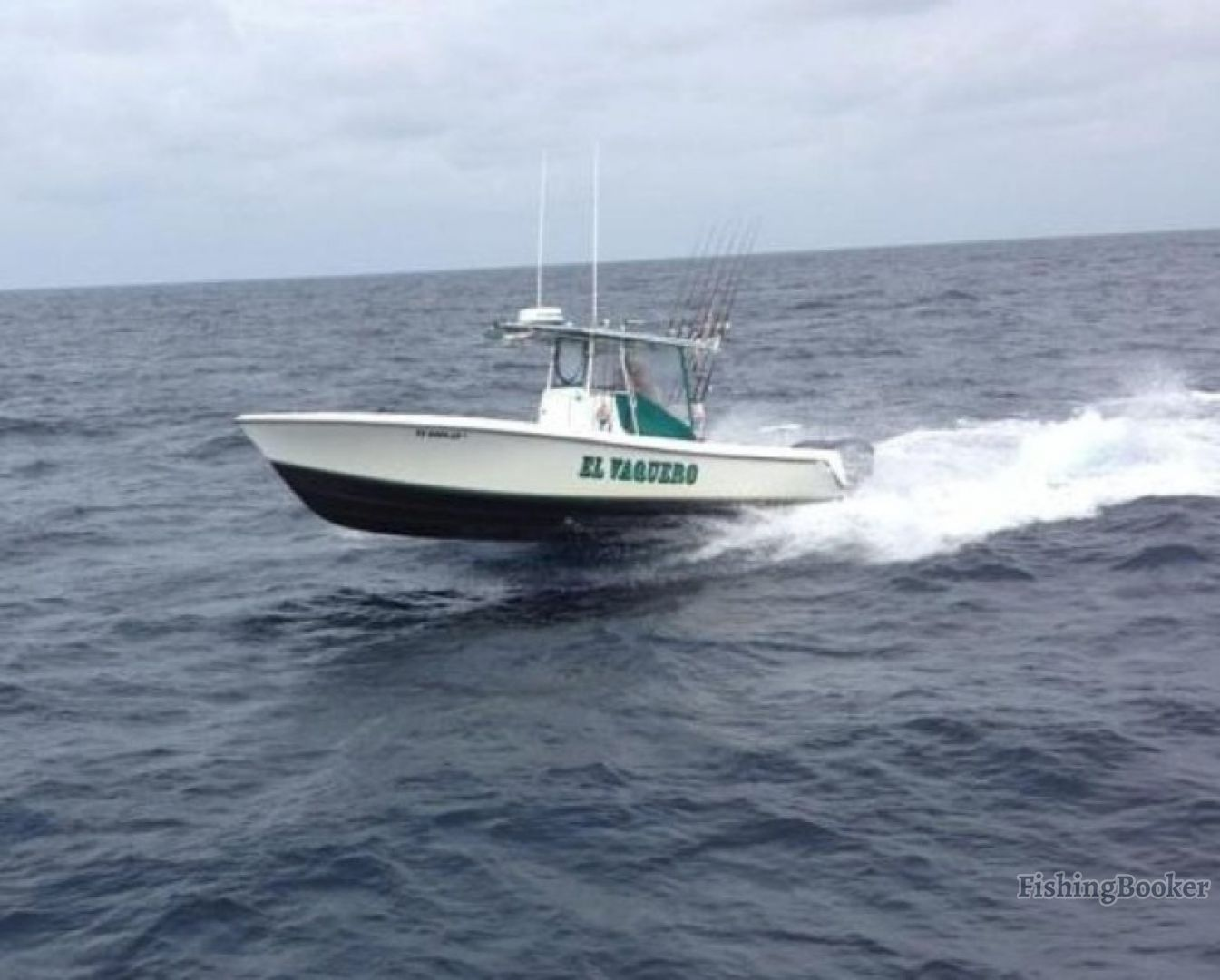 Cowboy charters contender freeport texas for Freeport texas fishing charters