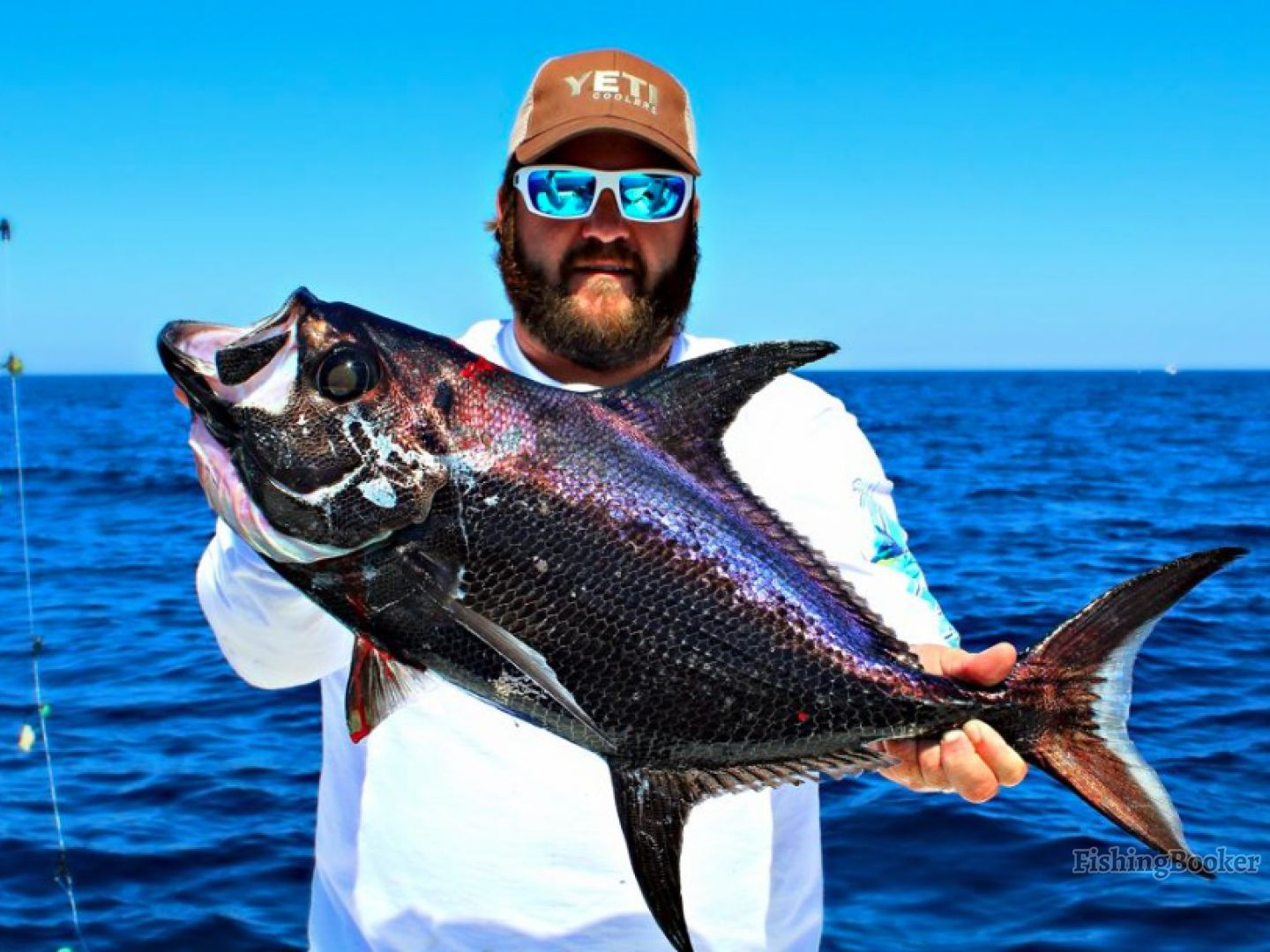 Sword a crazy fishing charters panama city beach florida for Panama city beach charter fishing