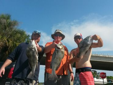 Daytona Beach Charters, Daytona Beach