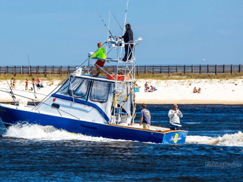 Miss madison fishing charters orange beach alabama for Alabama fishing charters