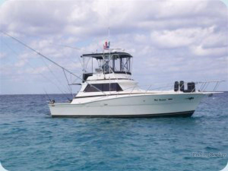 Bandida charters viking 40 cozumel mexico for Cozumel fishing charters