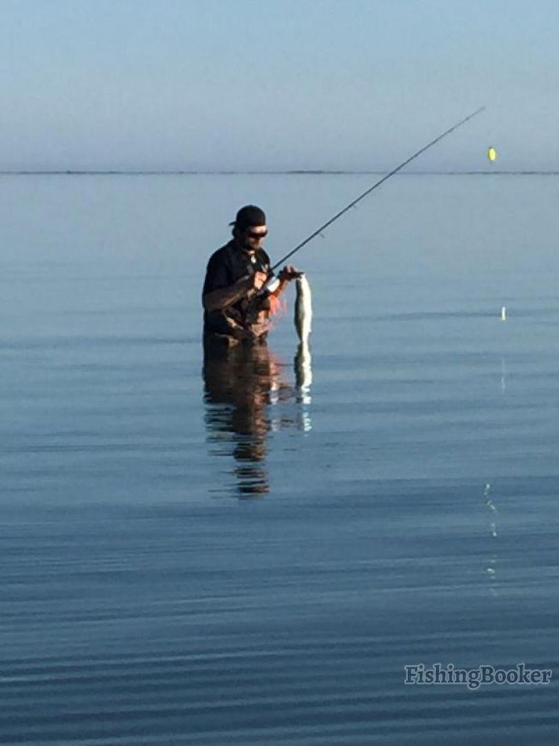 Corpus christi outfitters corpus christi texas for Fishing in corpus christi texas