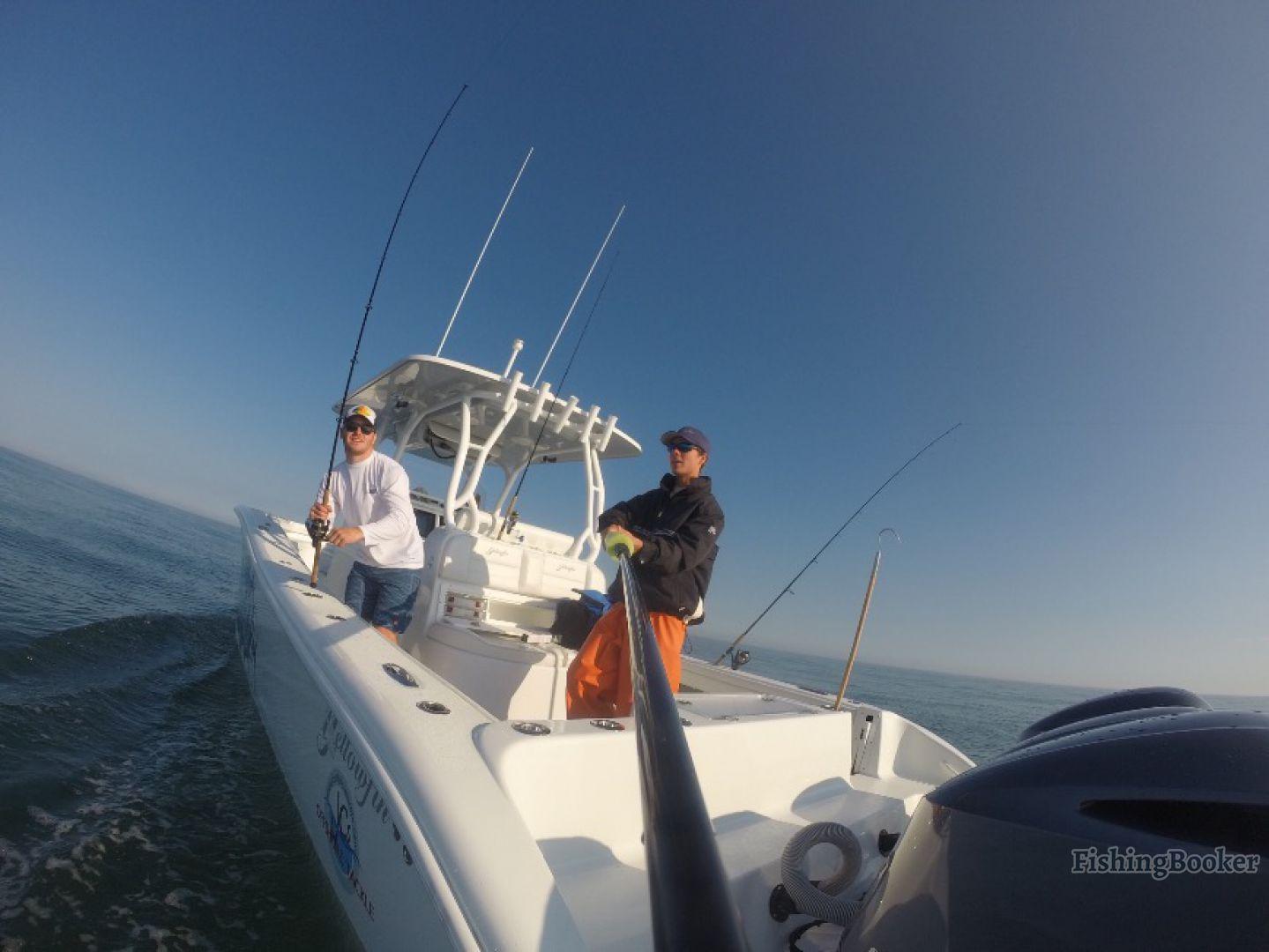 Jakamo sportfishing canyon fishing falmouth for Fishing charters falmouth ma