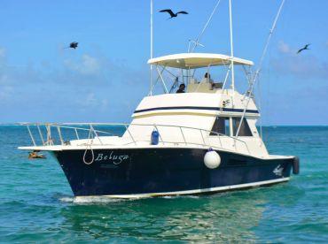 Chac Chi Marina - 41ft Beluga, Cancún