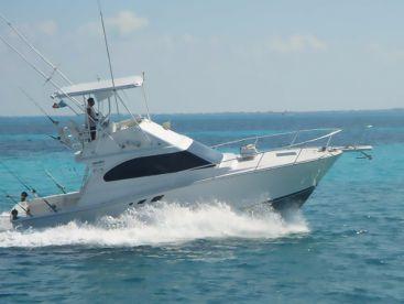 Chac Chi Marina - 36ft Heavenly, Cancún