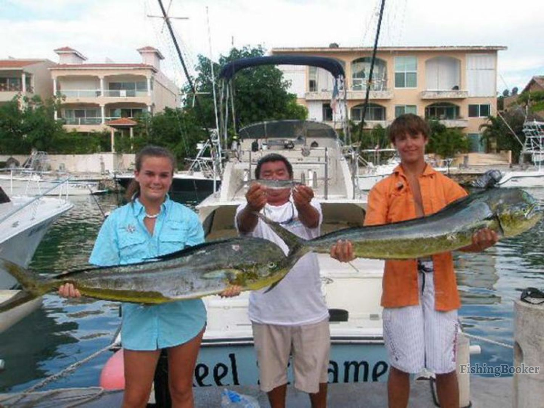 Captain rick s 31 bertrams fleet playa del carmen for Playa del carmen fishing charters