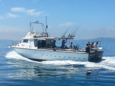 Rip Charters - 42' Big Blue, Sorrento