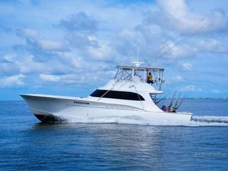 Predator sport fishing hatteras hatteras north carolina for Hatteras fishing charters