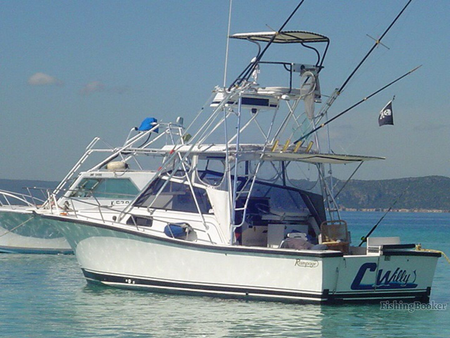 C willy charters port royal jamaica for Jamaica fishing charters