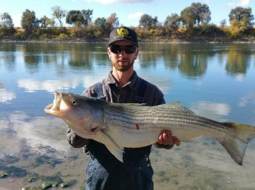 "5 ""S"" River Fishing Guide Service, Sacramento"