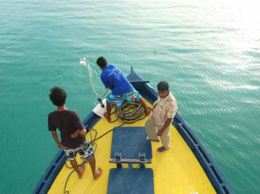 Vaali Fishing Beach Lodge , Felidhoo