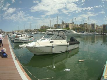 Misterfish Fishing Charters, Msida