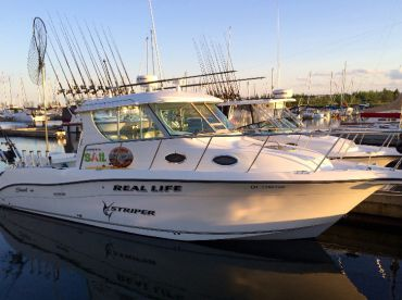 Reel Life Charters, Whitby