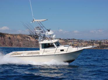 Dana Point Sportfishing , Dana Point