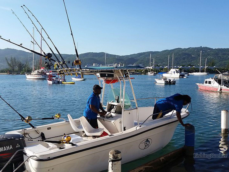 island reef ventures montego bay jamaica