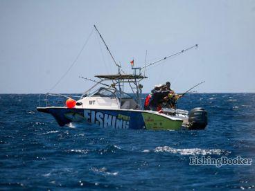 Azores Sport Fishing - Seazores, Ponta Delgada