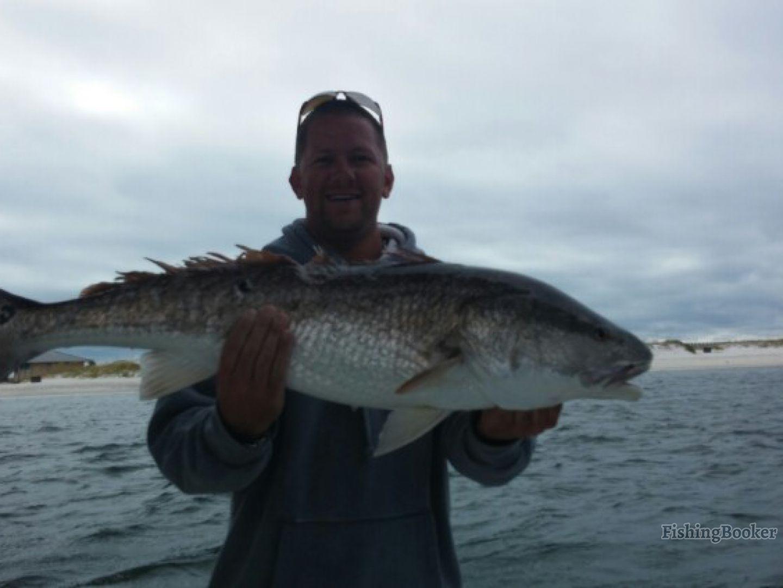 Cool change inshore fishing orange beach alabama for Alabama fishing charters