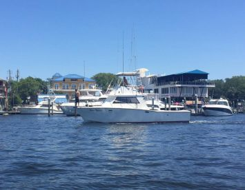 Salty Dawgz' Deep Sea Charters, Fort Walton Beach