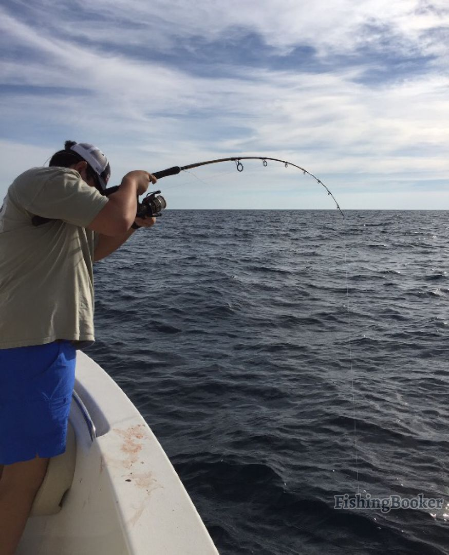 Bent outfitters fishing charters orange beach alabama for Alabama fishing charters
