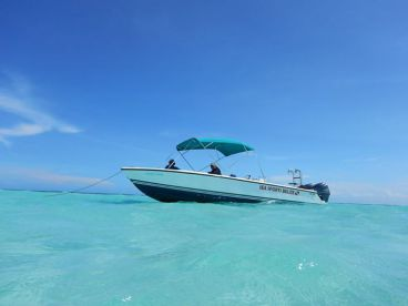 Good Ting Sea Sports, Belize City
