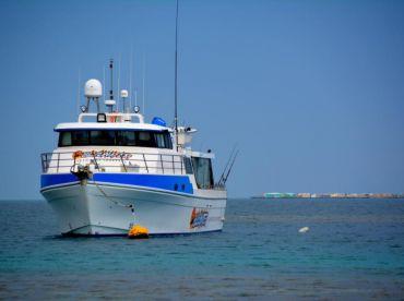 Blue Water Adventure Charters, Geraldton