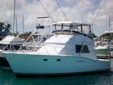 Hunter Charters - 38' Hatteras, Nassau