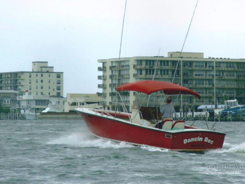 Dancin doc charter fishing ocean city new jersey for Ocean city nj fishing charters