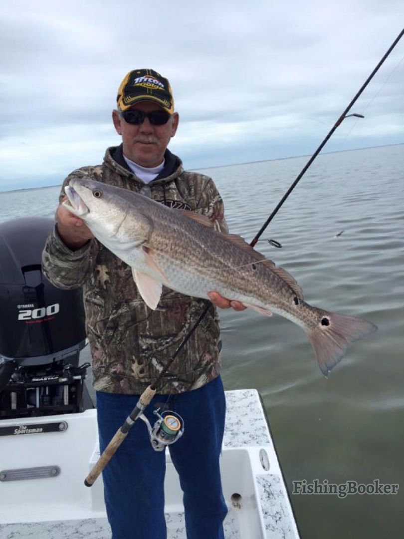 Captain lee s spi fishing charters south padre island for Tx fishing charters
