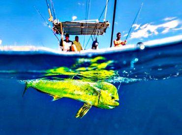 Prime Fishing , Durban