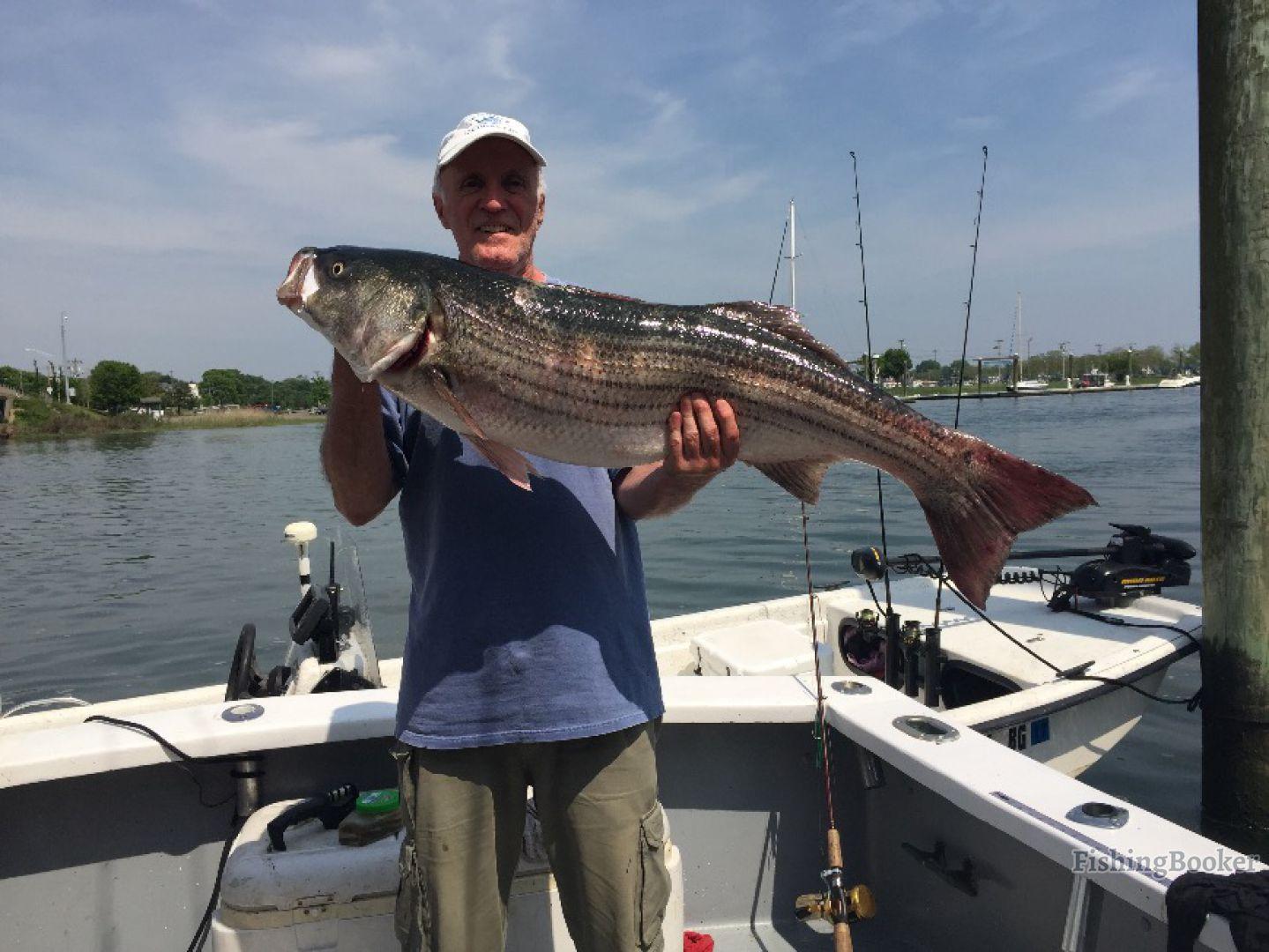 Pelagic beast fishing charters llc norwalk connecticut for Fishing charters ct