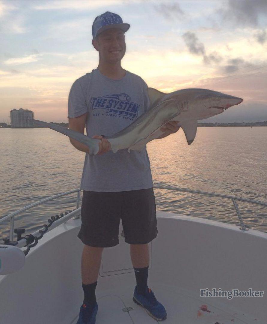Just Fish Pcb Have Fun Catch Fish Panama City Beach