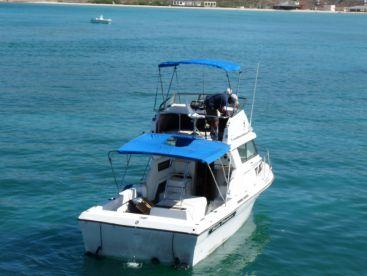 Baja Pirates Fleet - The Wildcat, La Paz