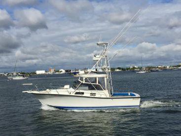 Tuna Wahoo Fishing Charters, Palm Beach Shores