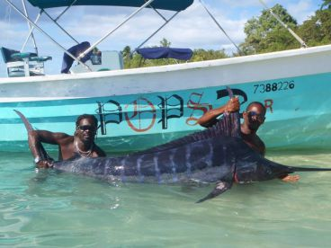 Pops Tours Tobago , Buccoo