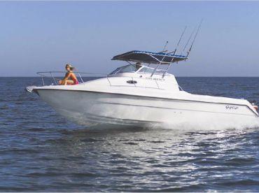 Dream fishing , Muscat