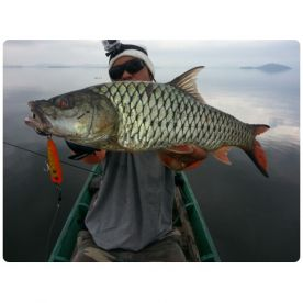 BKK Fishing Tour, Bangkok