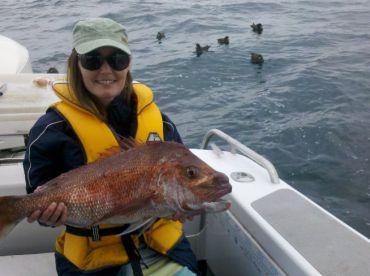 Reel Magic Fishing Charters, Mangawhai Heads
