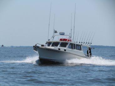 Chesapeake beach fishing charters fishingbooker for Chesapeake beach fishing charters